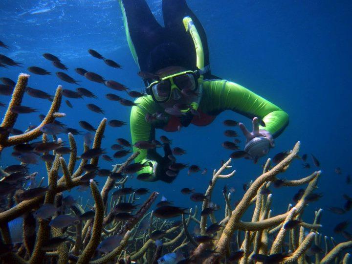 Pulau Kelagian - destinasi wisata lampung - 6