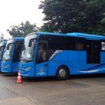 Rute Baru Bus Trans Lampung, Bandara Radin Inten II- Tanjung Setia Krui Pesisir Barat