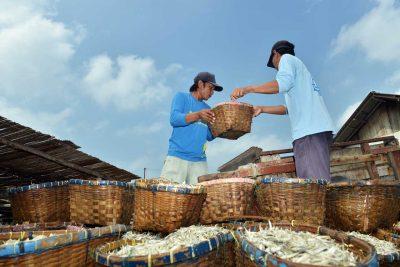 Kegiatan harian warga pulau pasaran - keliling lampung - yopie pangkey