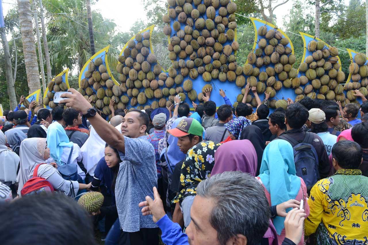 Festival Durian 2017 - Lampung - Yopie Pangkey - 4