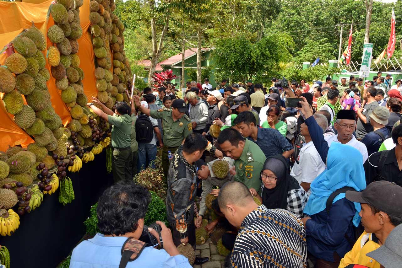 Festival Durian - Tahura Wan Abdul Rahman - dinas kehutanan provinsi lampung - yopie pangkey
