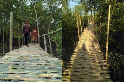 wisata hutan mangrove lampung timur - desa Sriminosari Labuhan Maringgai