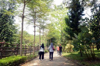 Taman Satwa Lembah Hijau - Yopie Pangkey - 7