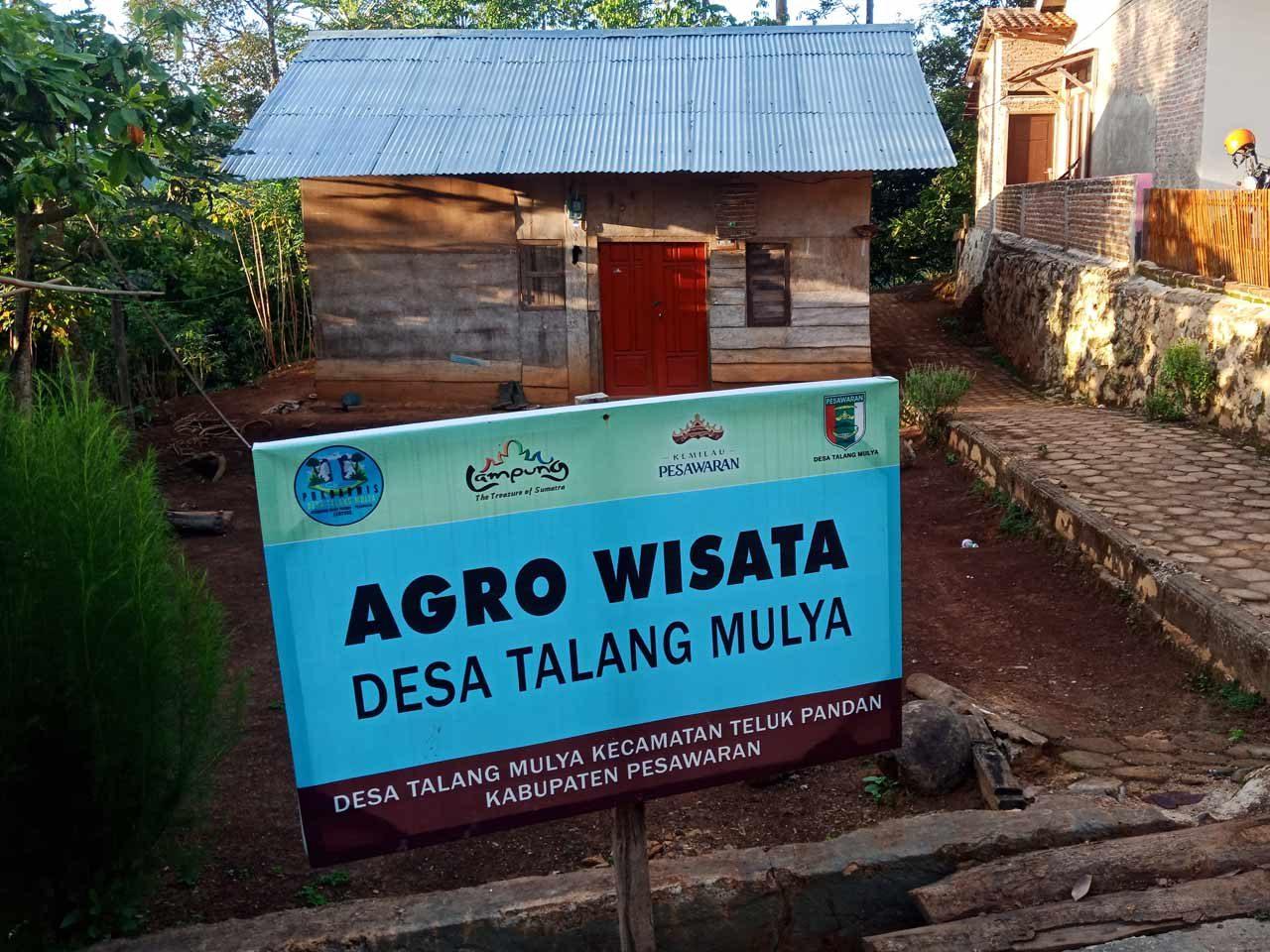Agro Wisata Desa Talang Mulya