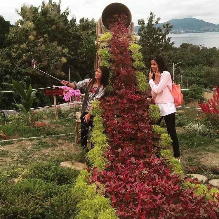 Taman Bunga Tumpah  - @nandonst77