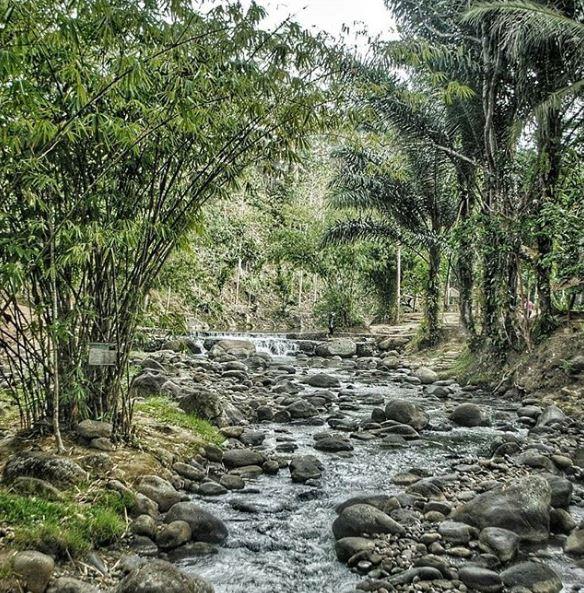 Wira Garden - @trybunchul