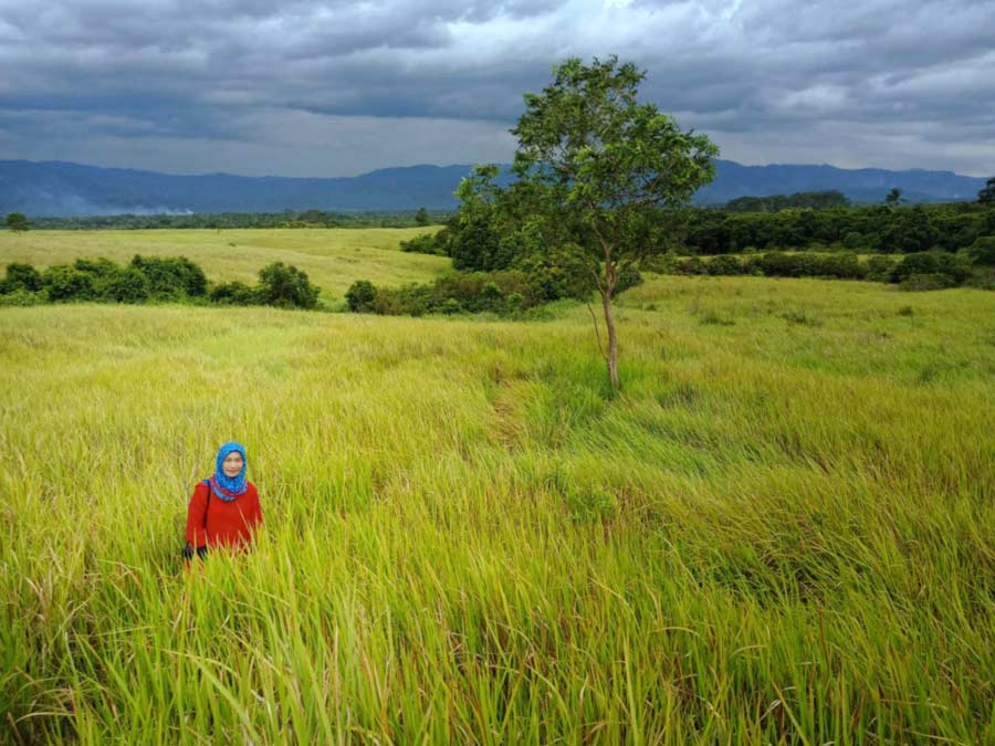 Padang Rumput Suoh Lampung Barat - yopie pangkey 10
