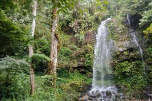 Foto Gambar Air Terjun Cipta Mulya - Curug Arter Cimul - kelilinglampung.net - yopiefranz - 2